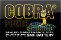Cobra Batteries